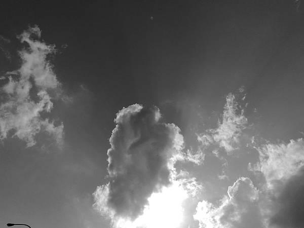 20090116210.jpg