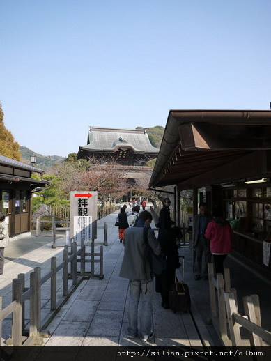 111130 沒看到紅葉的鎌倉遊