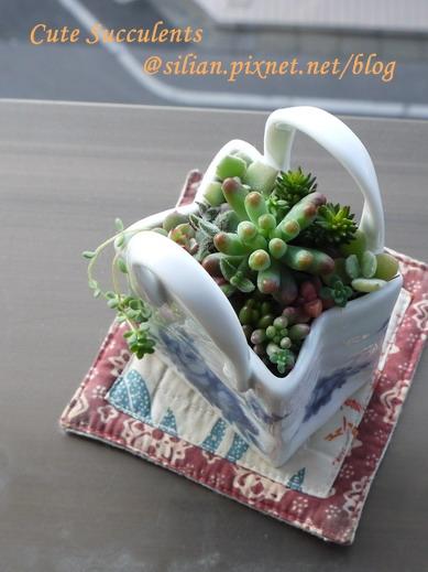 多肉陶瓷提包 03.JPG