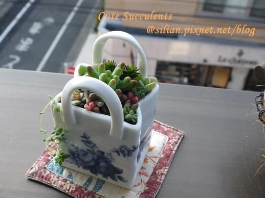 多肉陶瓷提包 06.JPG