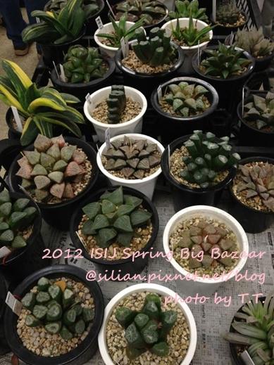2012 ISIJ Spring Big Bazzar