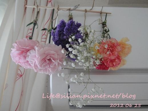 Drying Flower