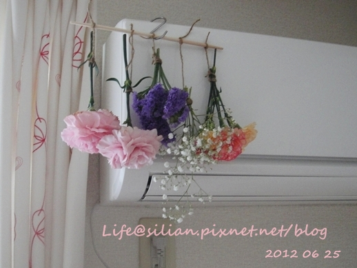 Drying Flower