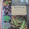 Aeonum