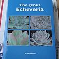 The Genus Echeveria 1