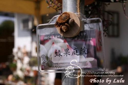 20130216 第二屆希莉安的多肉世界肉友同樂會 田尾場