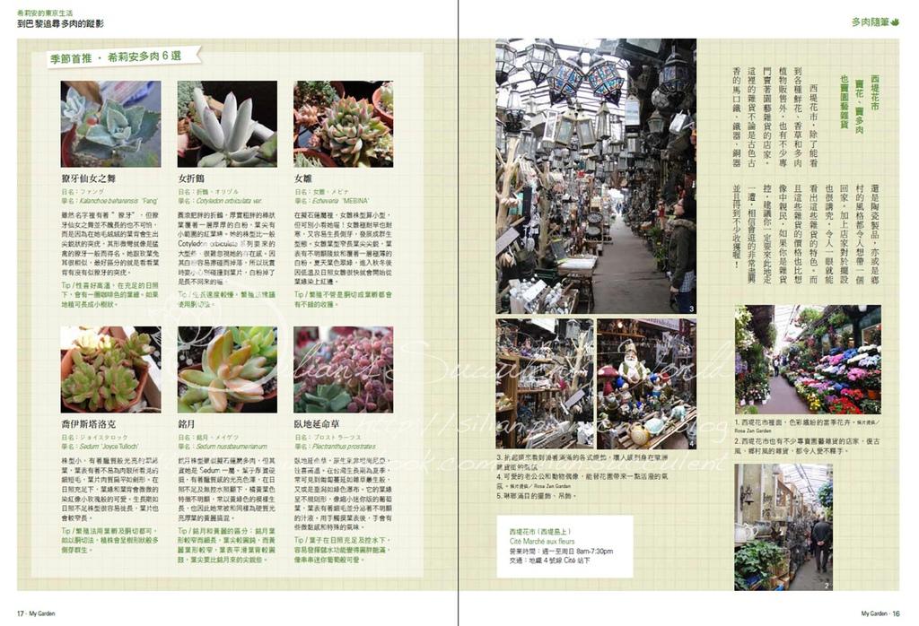201308 花草遊戲第69期希莉安多肉專欄 Page 15 16