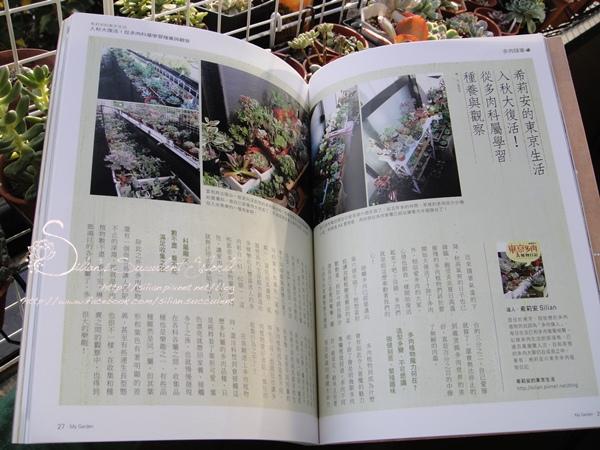 201310 花草遊戲第70期希莉安多肉專欄