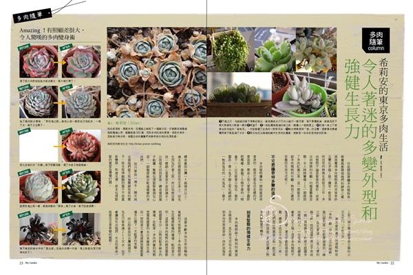 20120620 花草遊戲第62期希莉安多肉專欄 P22 23.jpg