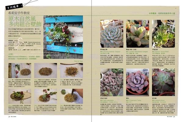 20120620 花草遊戲第62期希莉安多肉專欄 P24 25.jpg