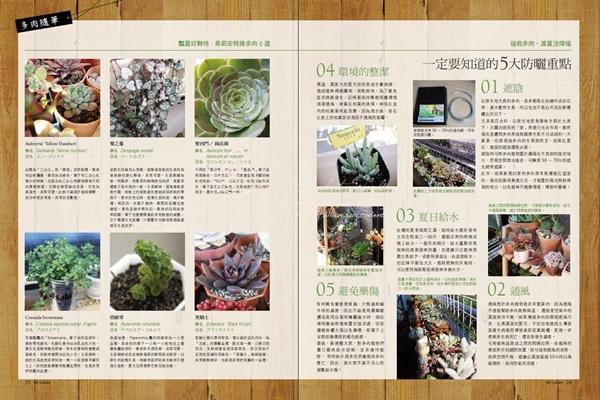 201208 花草遊戲第63期 希莉安多肉專欄
