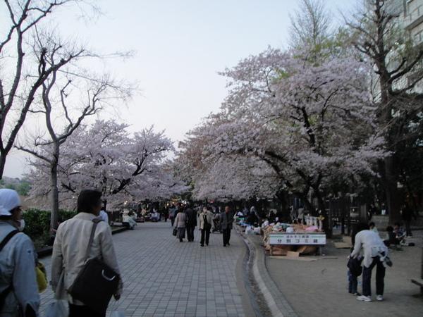 上野公園不忍池旁的步道