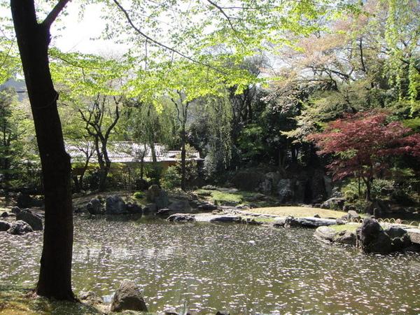 我很喜歡這個日式庭院的造景~
