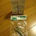 在daiso買的百元花對和三色花