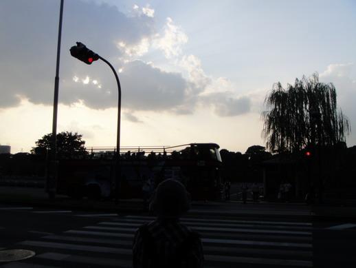 東京觀光雙層巴士