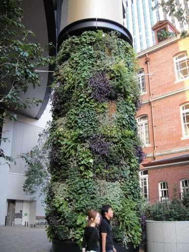 在丸之內大樓庭院看到綠化柱子~
