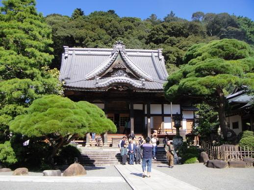 寺內大堂(旁邊的松樹看起來好好摸的感覺喔~)