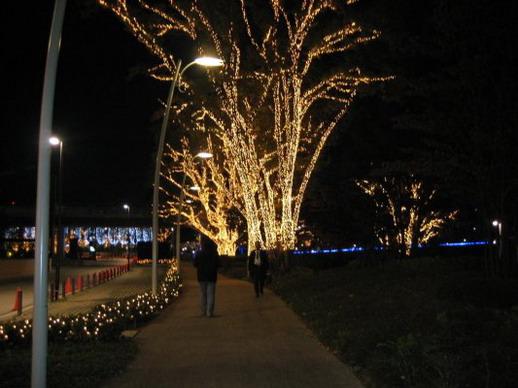往 Midtown 的路樹也裝飾上了燈飾
