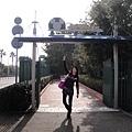 Go! Tokyo Disney Sea~
