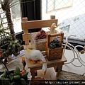 2010 冬 幸福窗台一角