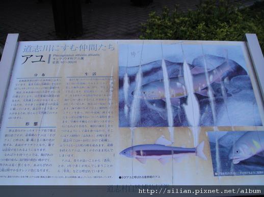 20100604 道志村道駅