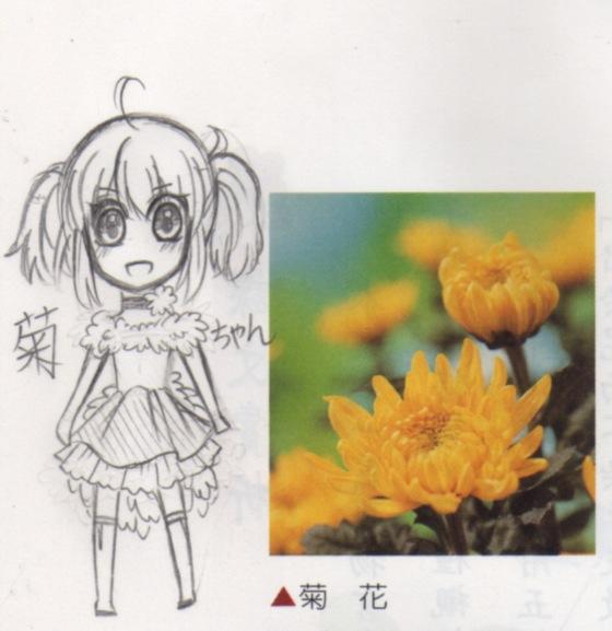 花擬人_菊