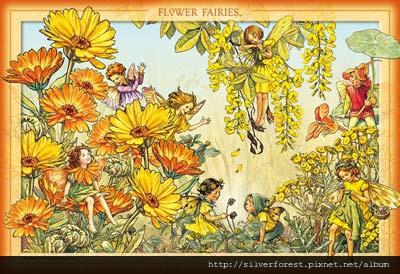 appleone 花仙子 太陽的香氣
