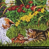 sunsout cats at play_5
