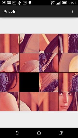 Puzzle_Lena_disarrange_1
