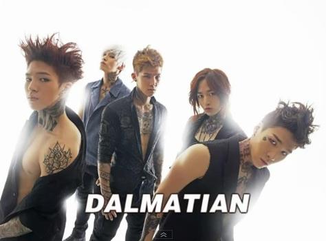 Dalmatian1