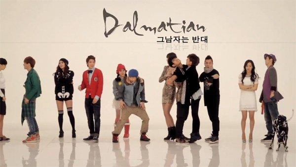 20110215_dalmatian