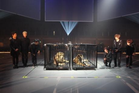 beast-japan-showcase7