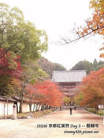 醍醐寺(3)