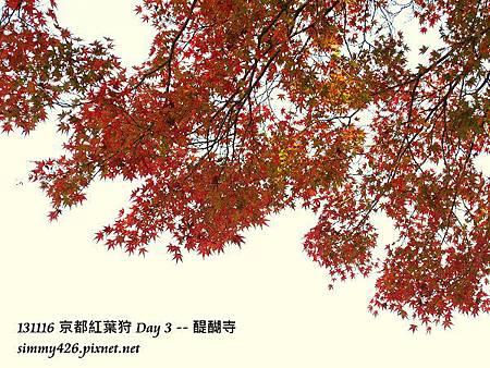醍醐寺(9)