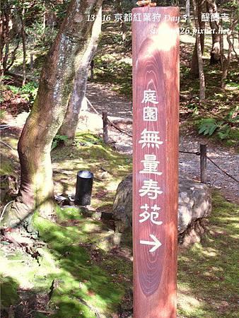 醍醐寺(46)