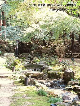 醍醐寺(48)