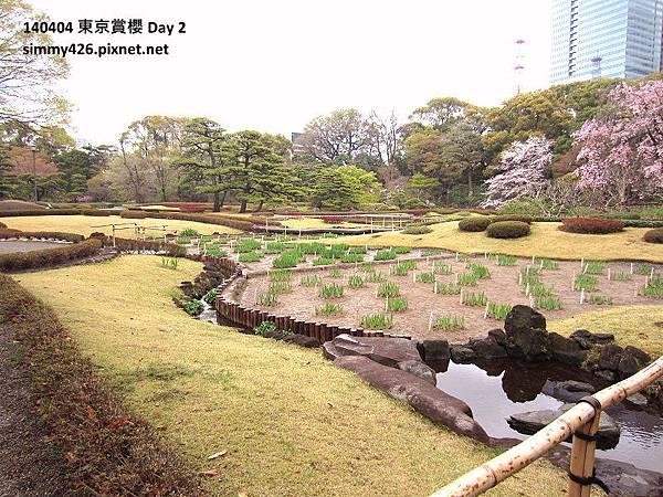 皇居 東御院(14).jpg