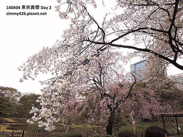 皇居 東御院(15).jpg