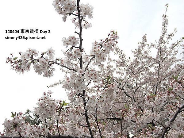皇居 東御院(29).jpg