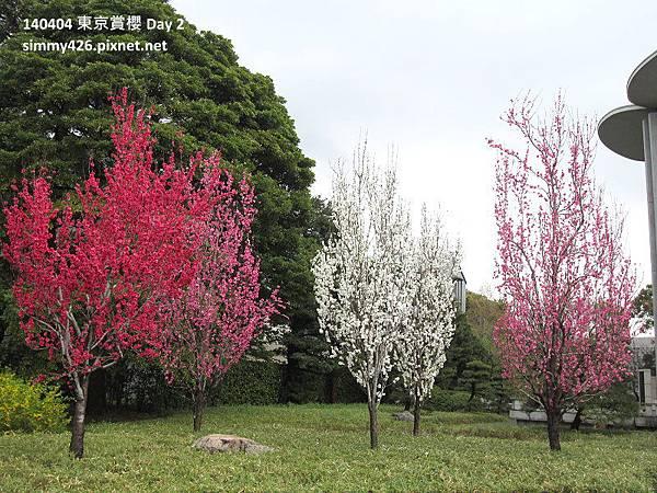 皇居 東御院(30).jpg