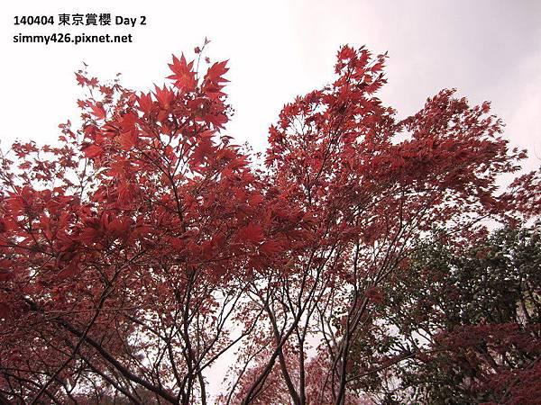 皇居 東御院(33).jpg