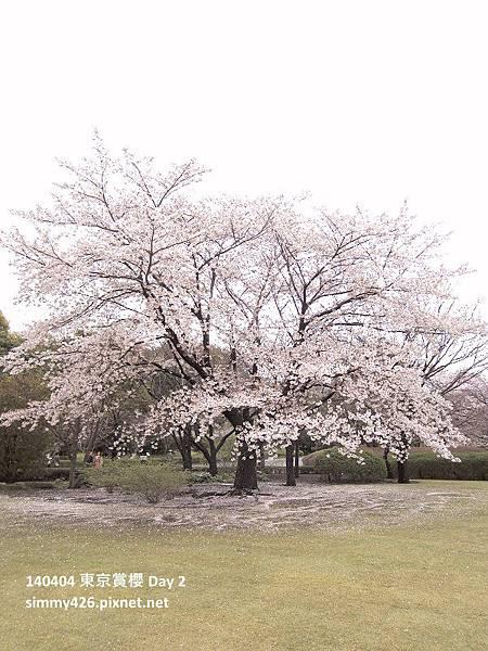 皇居 東御院(35).jpg