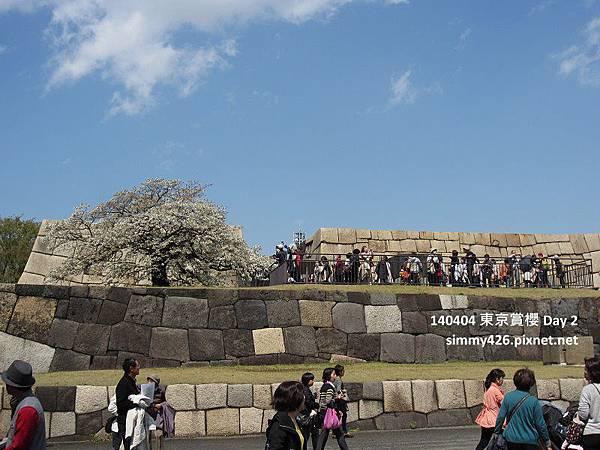 皇居 東御院(47).jpg