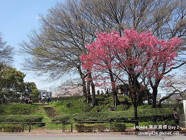 皇居 週邊步道(1).jpg