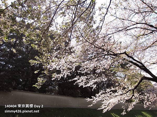 皇居 週邊步道(2).jpg