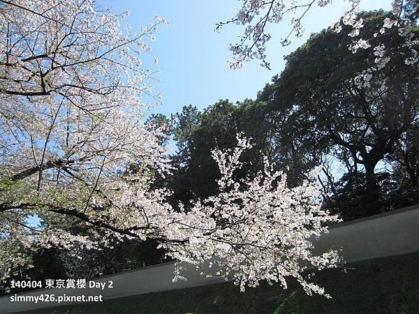 皇居 週邊步道(4).jpg