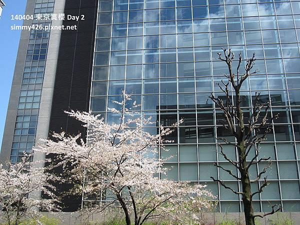 皇居 週邊步道(7).jpg