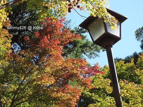 瑞寶寺町公園(5).jpg
