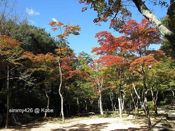 瑞寶寺町公園(11).jpg