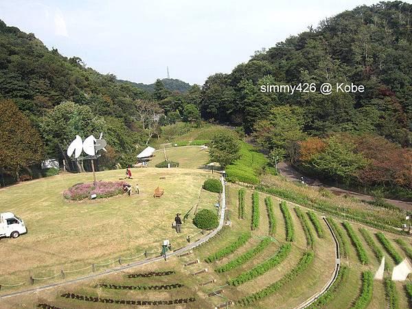 Herb Gardens (13).jpg